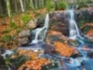 Leaves and Waterfall wall mural thumbnail