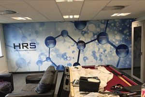 Office and Home Wall Murals Using Your Own Photos