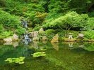 Beautiful Japanese Garden wall mural thumbnail