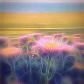 Light And Day Seaside Daisy wall mural thumbnail