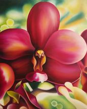 Beautiful Red Orchid mural wallpaper thumbnail