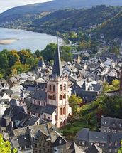 Rhine Valley wall mural thumbnail