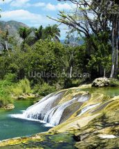 El Nicho Waterfall, Cuba mural wallpaper thumbnail