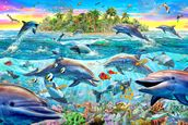 Dolphin Reef mural wallpaper thumbnail