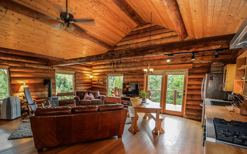cosy log cabin open plan living room and kitchen