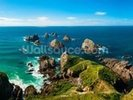 Nugget Point View wall mural thumbnail