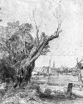 View of Omval, near Amsterdam, 1645 (etching) (b/w photo) wall mural thumbnail