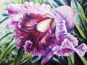 Abstract Pink And Purple Orchid - Oil Painting mural wallpaper thumbnail