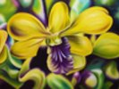 Close-Up Of Yellow Orchid Blossom (Oil Painting) wall mural thumbnail