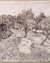 The Olive Trees (pen & ink on paper) mural wallpaper thumbnail