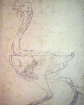 Study of a Fowl, Lateral View, from A Comparative Anatomical Exposition of the Structure of the Human Body with that of a Tiger and a Common Fowl, 1795-1806 (graphite on heavy wove paper) wall mural thumbnail