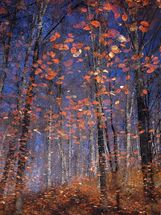 Autumn Leaves Fall wall mural thumbnail
