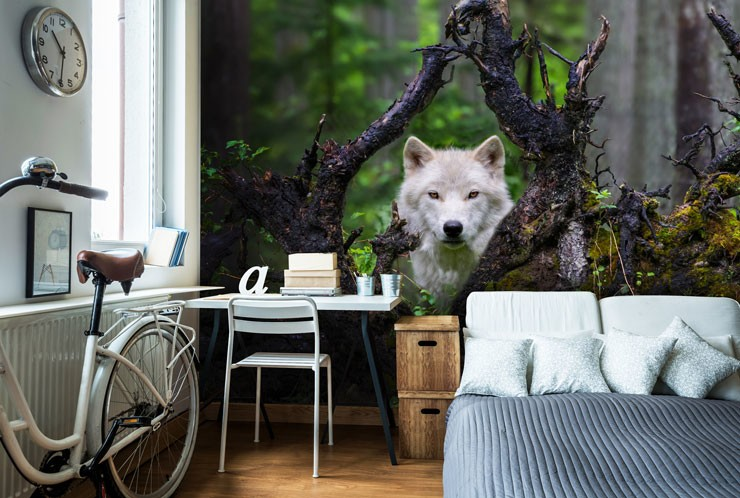 white wolf peering through fallen tree branches in woodland wallpaper in stylish bedroom