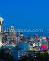 Seattle Skyline and Mount Rainier wall mural thumbnail