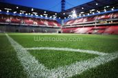 Football Stadium wall mural thumbnail