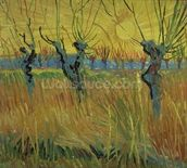 Pollarded Willows and Setting Sun, 1888 (oil on card) wall mural thumbnail