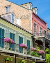 The French Quarter wall mural thumbnail