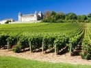 Burgundy, Chateau de Rully Vineyards wall mural thumbnail
