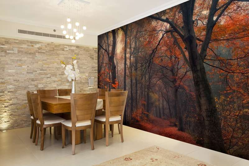 dramatic wall murals add depth