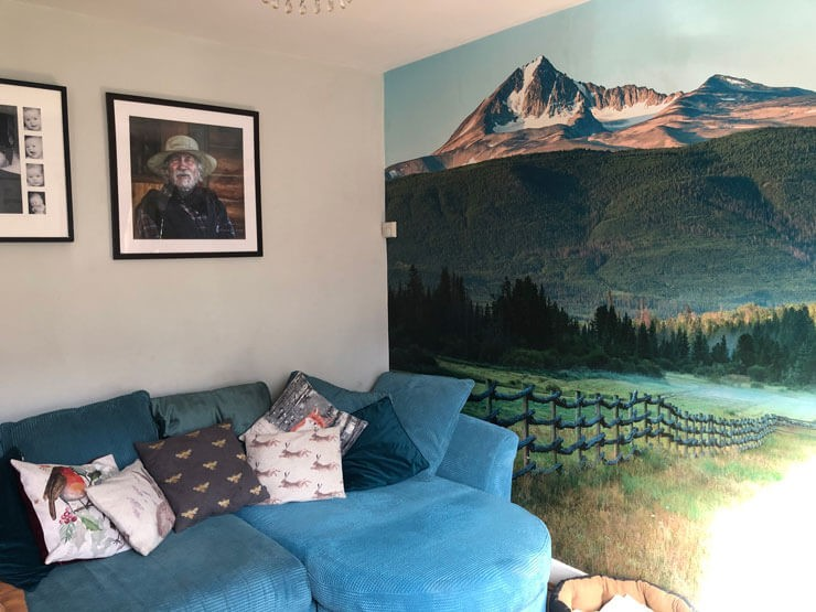 Canadian mountain and forest wallpaper in small living room with blue couch