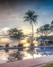 Sunset by the Pool wallpaper mural thumbnail