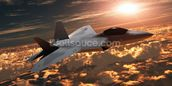 F-22 Fighter Jet wall mural thumbnail