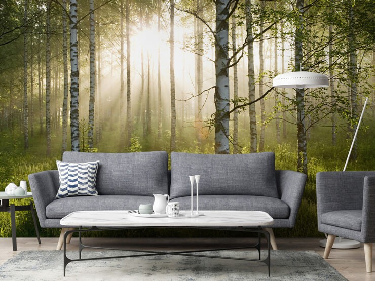 Birch-tree-wallpaper-in-living-room