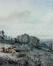 The Valley of the Stour, looking towards East Bergholt, 1880 (pencil, pen and ink and watercolour on paper) mural wallpaper thumbnail