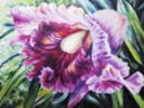 Abstract Pink And Purple Orchid - Oil Painting wall mural thumbnail