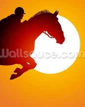 Sunset Jumping wall mural thumbnail