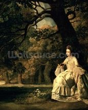 Lady reading in a Park, c.1768-70 wall mural thumbnail