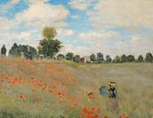 Wild Poppies, near Argenteuil (Les Coquelicots: environs dArgenteuil), 1873 (oil on canvas) wallpaper mural thumbnail