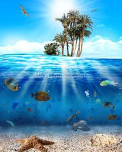 Underwater Scene wallpaper mural thumbnail