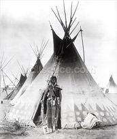 Blackfoot Brave, near Calgary, Alberta, 1889 (b/w photo) wallpaper mural thumbnail