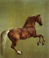 Whistlejacket, 1762 mural wallpaper thumbnail