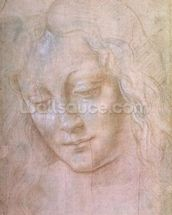 Head of a woman (metal point heightened with gouache) wallpaper mural thumbnail