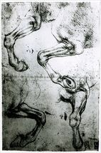 Studies of Horses legs (pen and ink on paper) mural wallpaper thumbnail