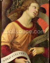 Angel, from the polyptych of St. Nicolas of Tolentino, 1501 (oil on panel) mural wallpaper thumbnail