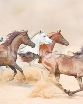 Horses herd running in the sand storm wallpaper mural thumbnail