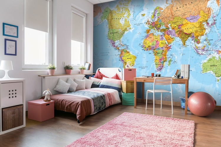 political world map mural