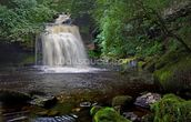 West Burton Waterfall mural wallpaper thumbnail