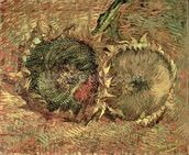 Two Cut Sunflowers, 1887 (oil on canvas) wallpaper mural thumbnail