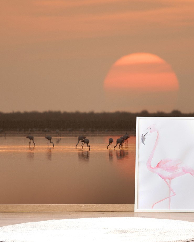 coral-sunset-wallpaper-with-flamingos