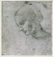 Head of a Young Woman or Head of the Virgin, c.1490 (silverpoint on paper) wall mural thumbnail
