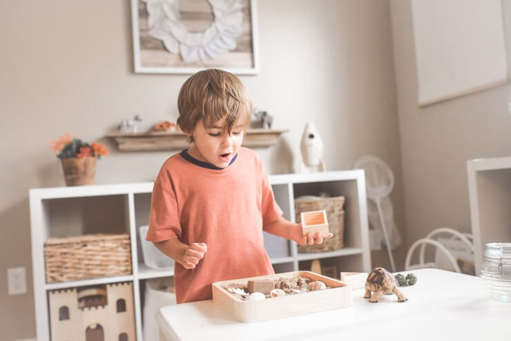brown haired boy at home playing with box of shells whilst home schooling
