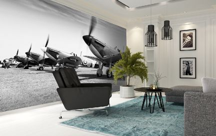 Darren Harbar Wall Murals Wallpaper