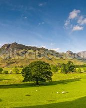 Cumbria wallpaper mural thumbnail