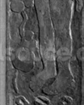 Carved vertical panel from the door frame of Gauguins final residence in Atuona on Hiva Oa (Marquesas Islands), 1902 (sequoia) mural wallpaper thumbnail