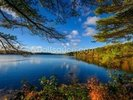 Forest Lake in Autumn wall mural thumbnail