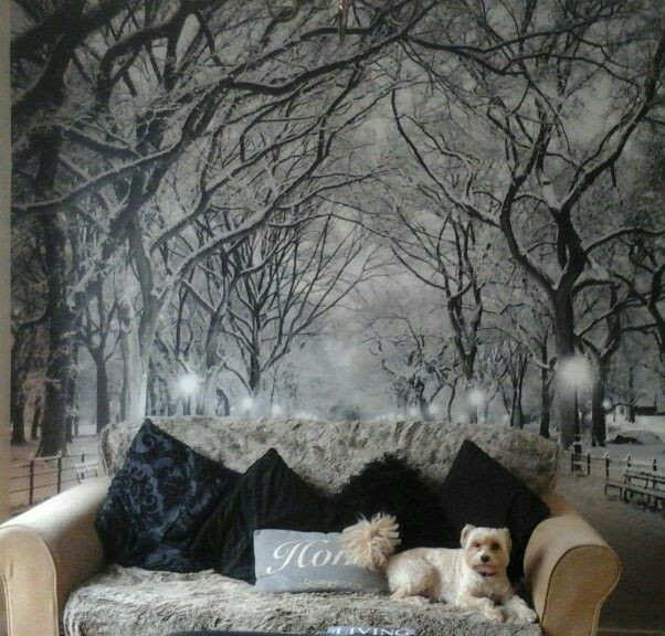 black and white snowy park wall mural with beige sofa and cute white dog sat on it